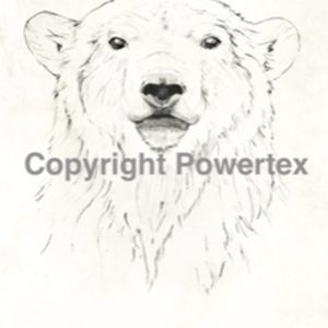 "A4 Art Animal Print ""Bear"" to use for photo transfers or collage, Black and White, Powertex Australia"