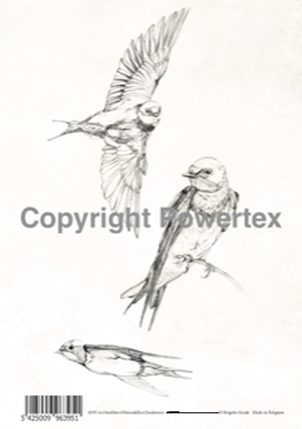 "A4 Art Bird Print ""Swallows"" (B&W) to use for photo transfers or collage, Powertex Australia"