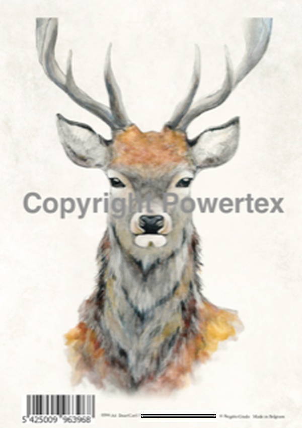 "A4 Art Animal Print ""Deer (Colour)"" to use for photo transfers or collage, Powertex Australia"
