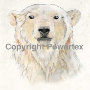 "A4 Art Animal Print ""Bear (Colour)"" to use for photo transfers or collage, Powertex Australia"