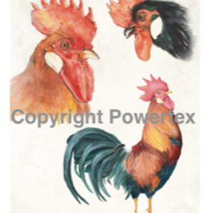 "A4 Art Bird Print ""Roosters"" to use for photo transfers or collage, Powertex Australia"