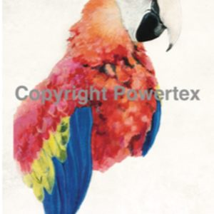 "A4 Art Bird Print ""Parrot"" to use for photo transfers or collage, Powertex Australia"