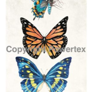 "A4 Art Print ""Butterflies"" to use for photo transfers or collage, Powertex Australia"