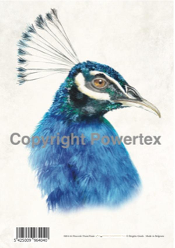 "A4 Art Bird Print ""Peacock"" to use for photo transfers or collage, Powertex Australia"