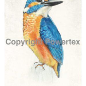 "A4 Art Bird Print ""Bird (Colour)"" to use for photo transfers or collage, Powertex Australia"