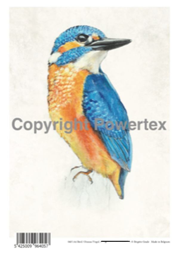 "A4 Art Bird Print ""Bird (Colour)"" to use for photo transfers or collage, Powertex Australia"