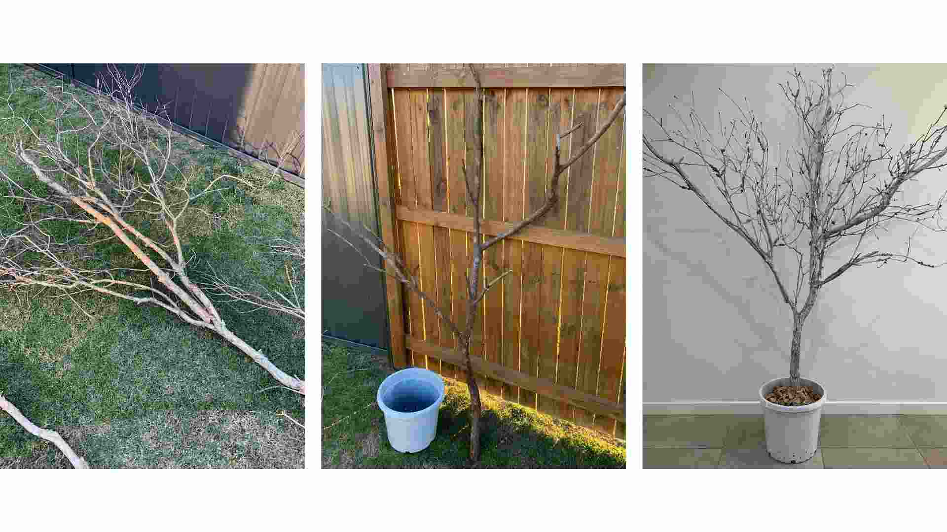 Step 1 Powertex Christmas Tree by Erika Venter