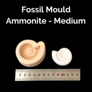 Fossil Mould - Medium Ammonites - Powertex Australia