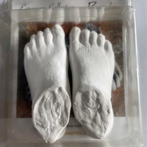 Plaster Feet for Bella - Powertex Australia